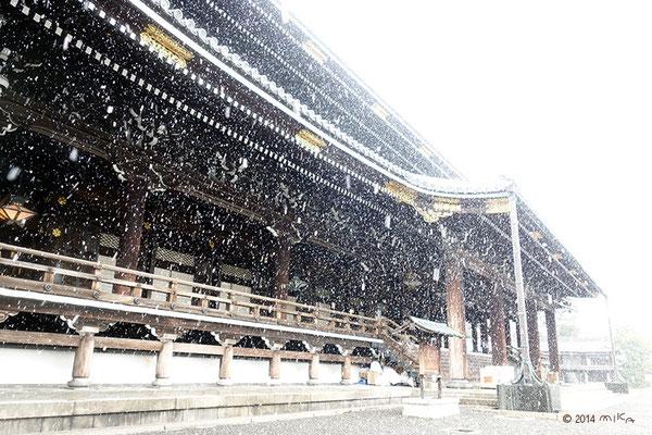 雪の東本願寺(京都)