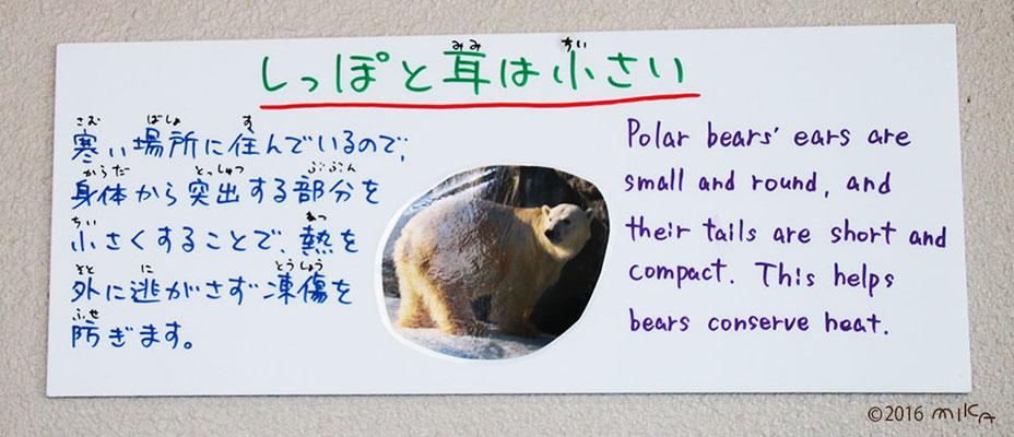 しっぽと耳は小さい(旭山動物園の看板)