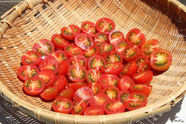 ミニトマトの切り口を上にして天日干し