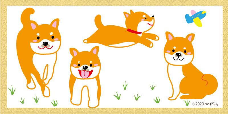 柴犬の家族