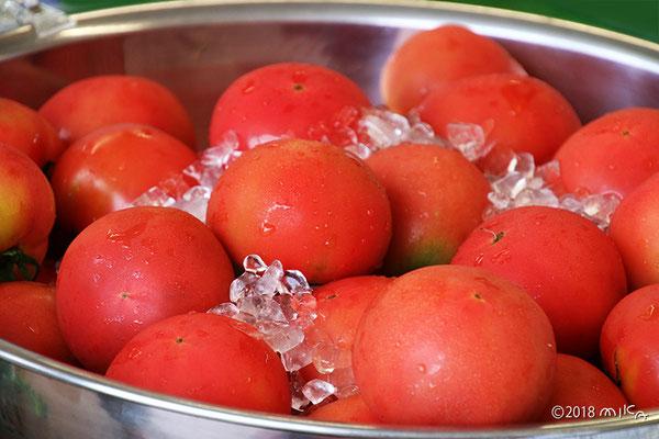 氷で冷やしたトマト