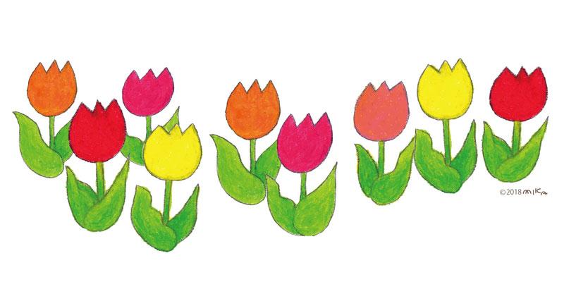 並んで咲くチューリップの花(クレパス)