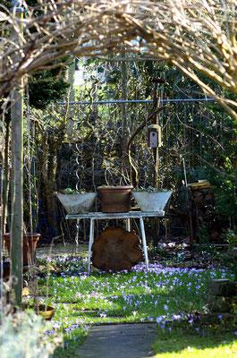 Gartenidylle. Foto: Sandra Borchers