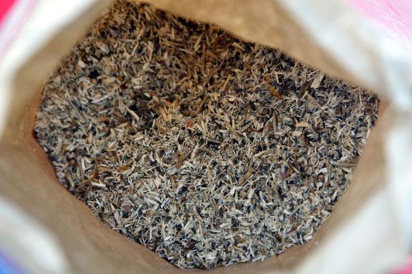 Blick in die Tüte mit der speziell für unseren Boden zusammengestellten Saatmischung. Foto: Sandra Borchers