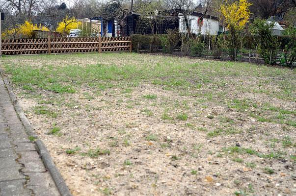 """Die unregelmäßige Verteilung des Grüns begründet sich auf die unterschiedlichen """"Testfelder"""", teilweise wurde eine Feldblumenmischung (einjährige) mit ausgesäht. Foto: Sandra Borchers"""