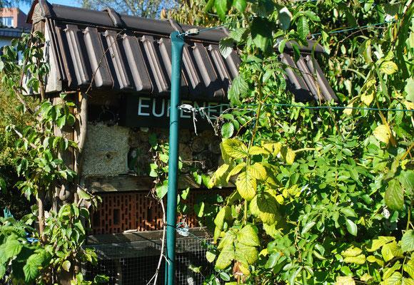 Das Insektenhotel am 30.09.2012 - es ist kein Rot mehr zu erkennen! Foto: Sandra Borchers