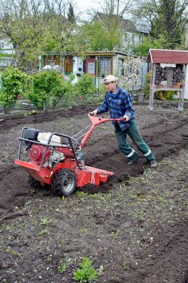 Die Gartenfräse & der Cowboy ;-) Foto: Sandra Borchers