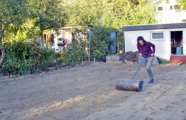 Frisch ans Werk: Die ersten Walz-Runden über den noch lockeren Boden. Foto: Sandra Borchers