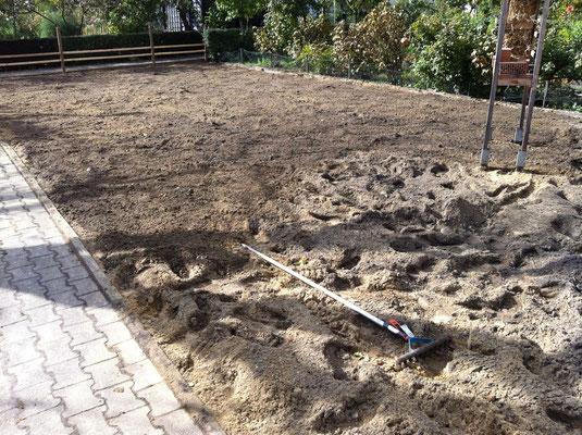 """Nach dem Fräsen:Die """"Kraterlandschaft"""" muß noch mit der Harke etwas eingeebnet werden. Foto: Sandra Borchers"""
