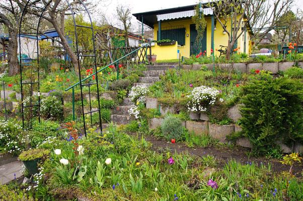 April 2012 Foto: Sandra Borchers