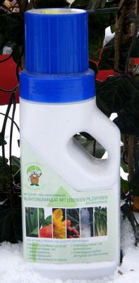 Düngepilze - Mobilane Fertighecke® - Pflanzfertige Heckenelemente - Fertiger Sichtschutz - Garten Bronder©
