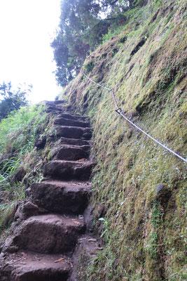 Vorsicht Stufen!