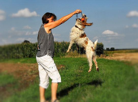 Hundefotografie in Ebersberg