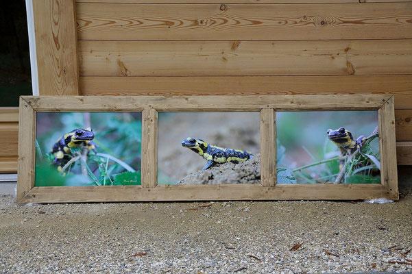 Exemple de tryptique horizontal avec 3 images 40x55cm