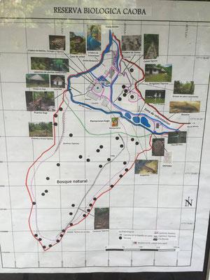 Reserva Biologica Caoba - Paso del Mango, Santa Marta, Colombia