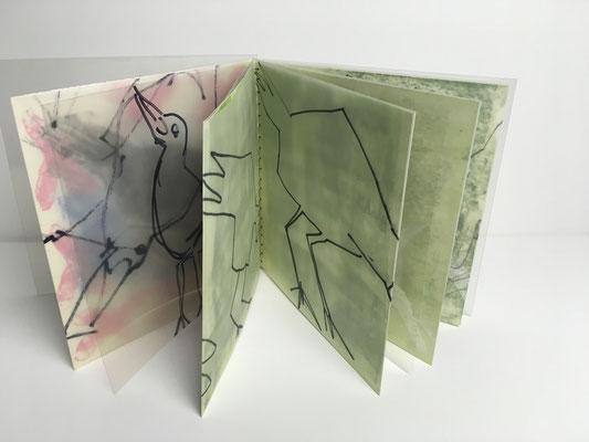 Die Amsel, Buch Mischtechnik auf Papier