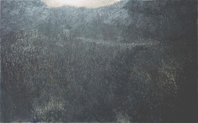 paesaggio d'ombra 110x170