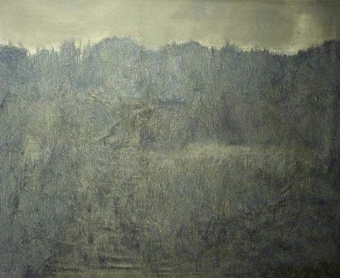 paesaggio d'ombra 196x233 cm