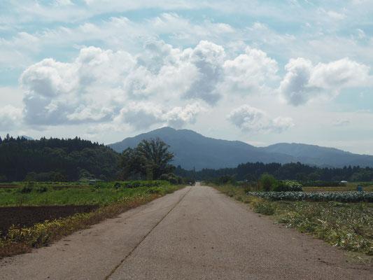 佳作「畑の道」
