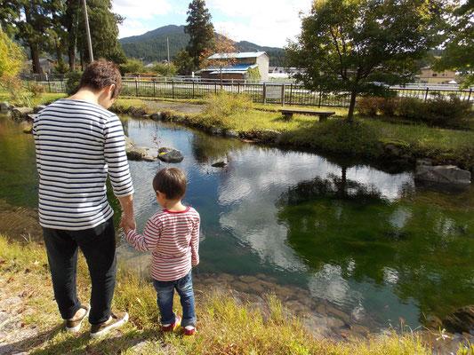 あふれる緑部門佳作「きれいな水面と親子の背中」