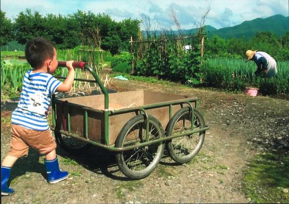ばあちゃんとひ孫「僕、四輪車大好き」