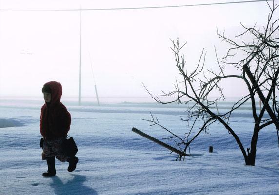 冬の下山田