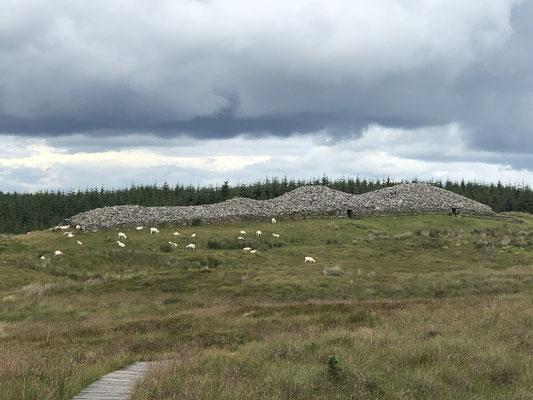 Ein Cairn, neolithisches Bauwerk aus Stein, dessen Zweck man bis heute nicht kennt ... nur Spekulationen zulässt.