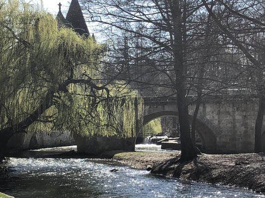 Wasser, Licht und erstes Frühlingsgrün in Moret.