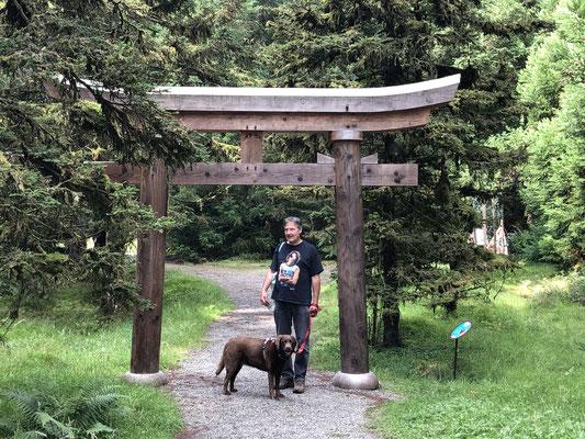 Hier beginnt der japanische Teil des riesigen Parks.
