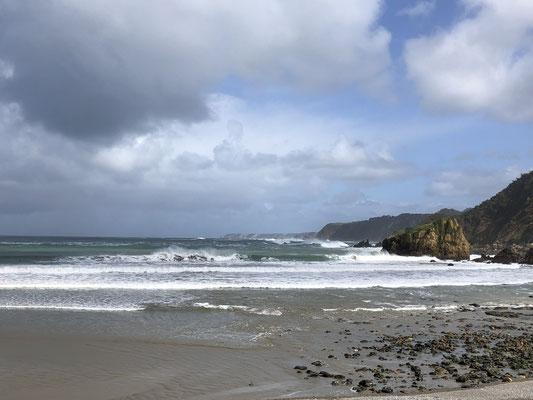 Die Gegend ist ähnlich unserem Zuhause, aber zugleich am Meer gelegen ...