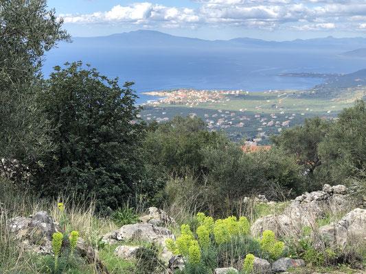 Beinahe zurück ... der Ausblick auf unsere Bucht und Agios Nikolaos, was für ein wunderbares Fleckchen Erde!