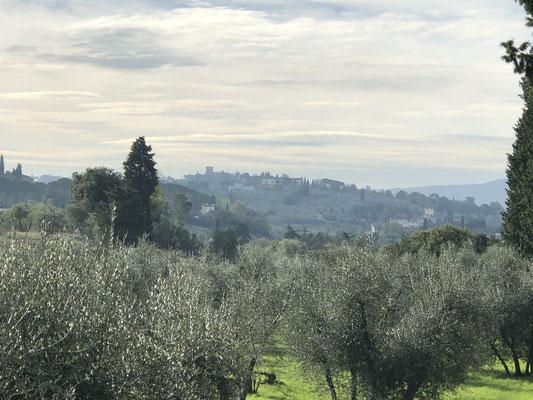 Toskana mitten in Firenze