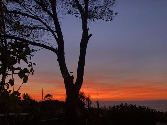 Früh morgens, die Sonne geht auf ... gleich.