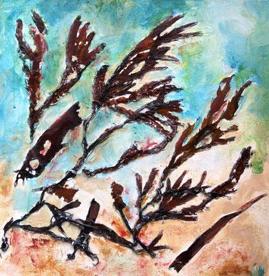 Mein walisisches Meer 2, Algen in Acryl auf Karton, 40 x 40 cm, Wales 06/19