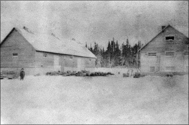 Ferme de Baie Ste-Claire, grange, bergerie et moutons