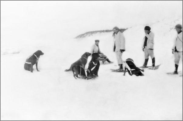 Expédition hivernale vers 1900-1903