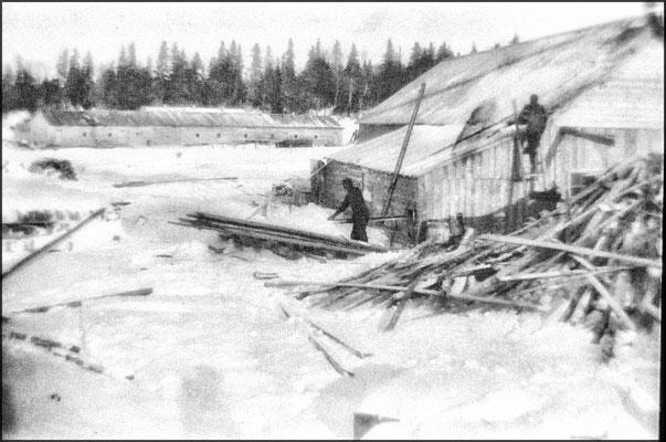 Baie Ellis, écurie et moulin à scie