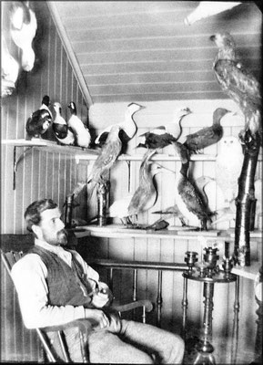 Monsieur Paradis, taxidermiste