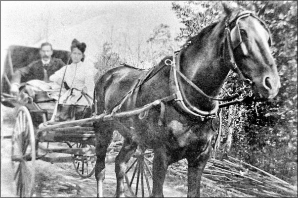 Cabriolet, Louis-Philippe Desbiens à Baie Ste-Claire