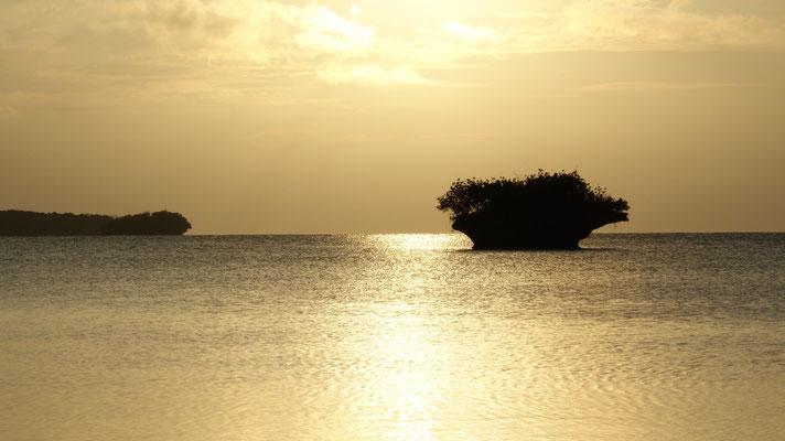 Baie de la Corbeille