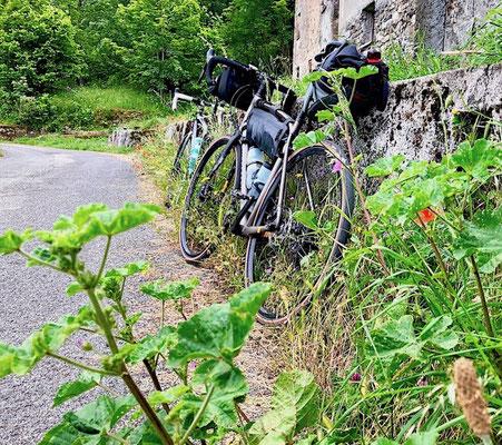 Berghuhn, Italien, Ligurien, Radreise, Radtour, Apennin, Specialized Diverge, Ortlieb, Revelate Designs