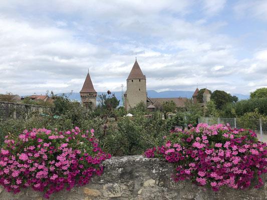 Burganlage am Lac de Neuchâtel