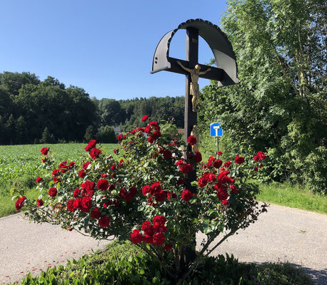 ein Feldkreuz am Wegesrand des AAR
