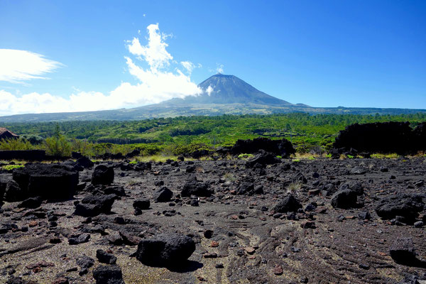 Ausblick auf den Pico von der Nordküste