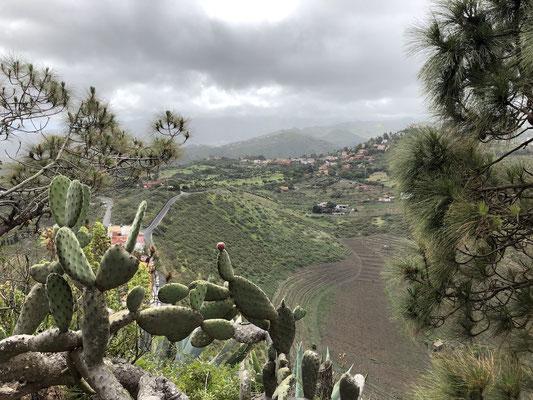 Aussicht vom Pico de Bandama