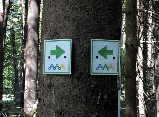 Wegmarkierung der Trans Bayerwald