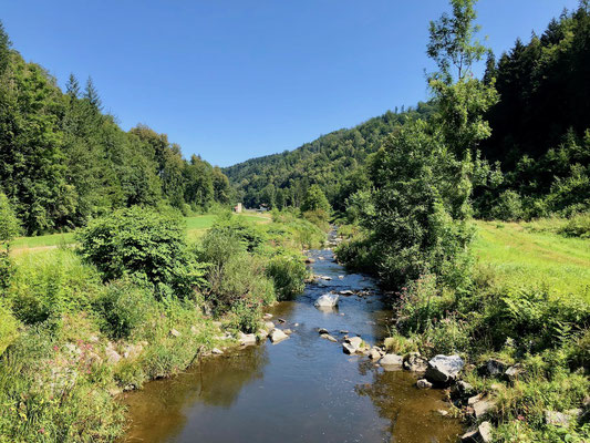 nach wenigen Kilometern entlang der Donau wird es ruhig