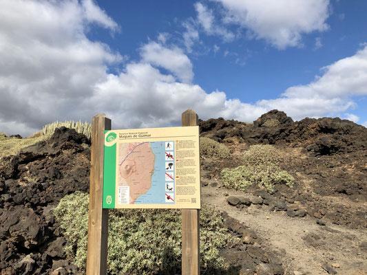 Start in das Naturschutzgebiet Malpais de Güimar