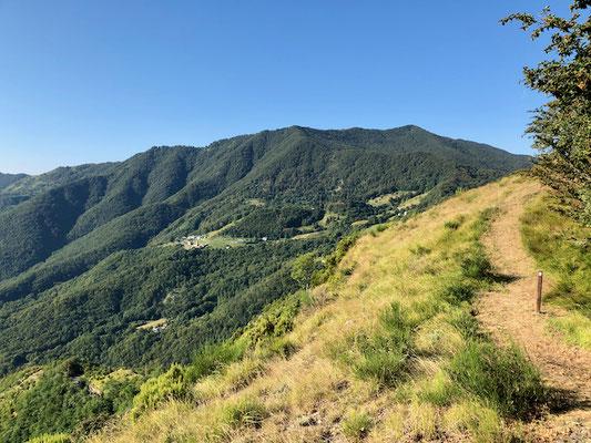 Erster Teil des Wanderwegs mit Blick auf den bewaldeten Rücken des Monte Ramaceto
