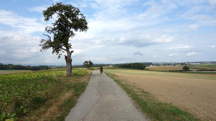 Radweg nahe des Lac de Neuchâtel